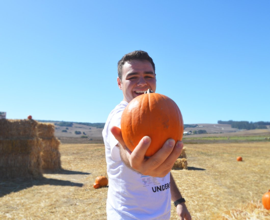 pumpkin-patch-10