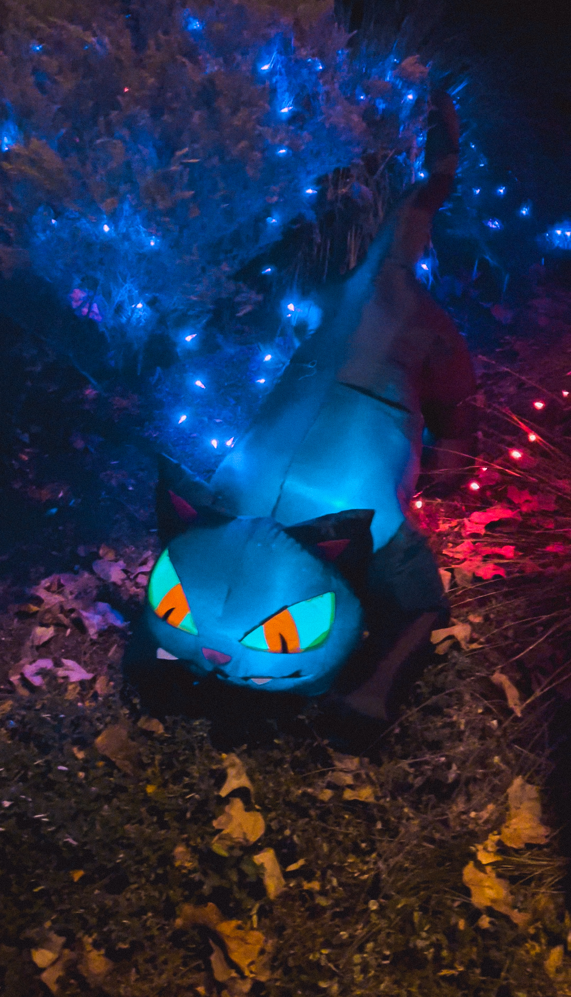 These Halloween inflatables give your yard all the spooky vibes - with little to no work or set up required. Happy haunting!